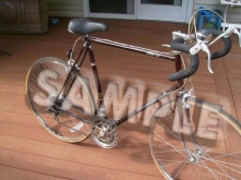 SAMPLE -- Panasonic Road Bike
