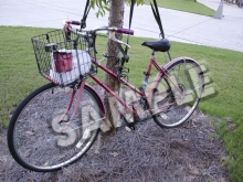SAMPLE -- Oldschool Red Hybrid Bike